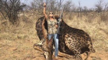 Trophy hunter explains why she never has regrets