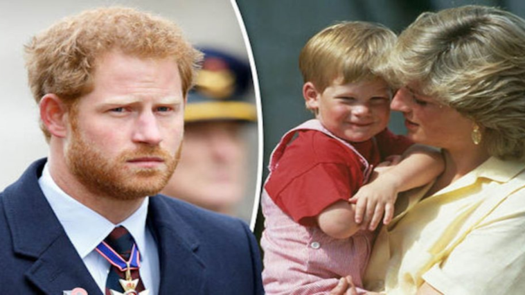 Prince Harry turned to drugs and alcohol to cope with Princess Diana's death