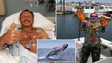 Whale 'swallows' fisherman off Massachusetts