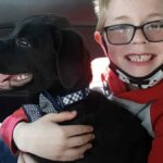 8-year-old Virginia boy sells Pokémon cards to save his sick dog