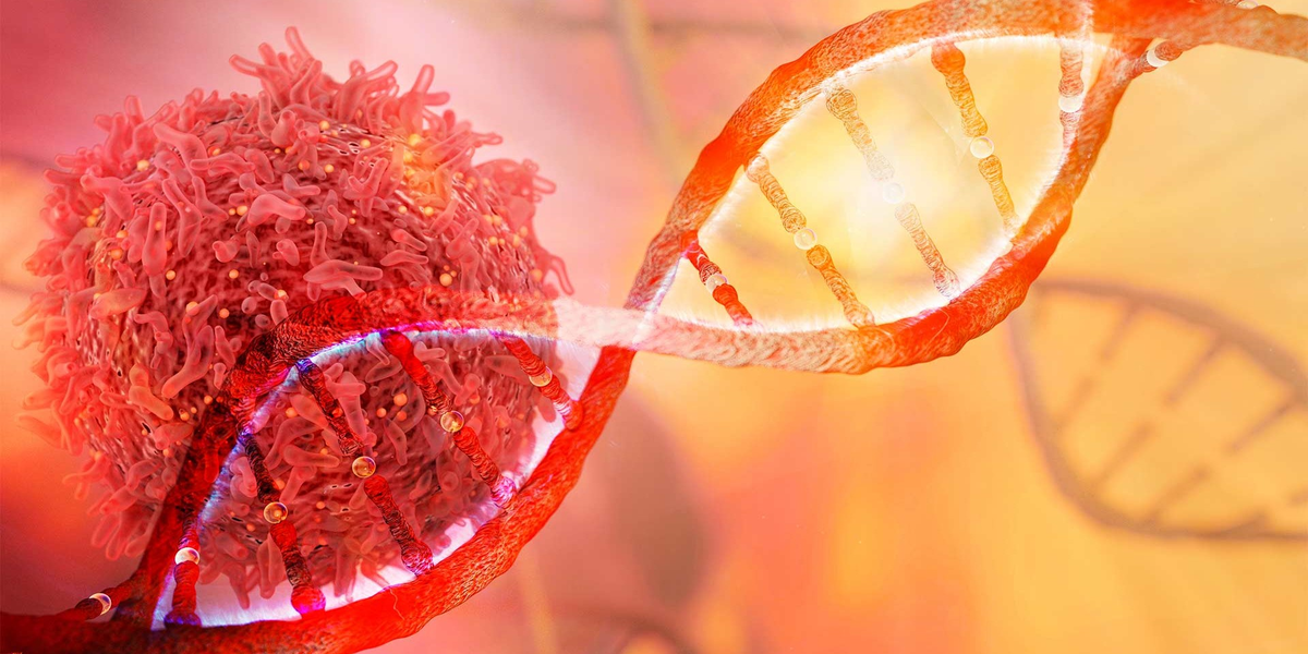 Cancer can start almost anywhere in the human body