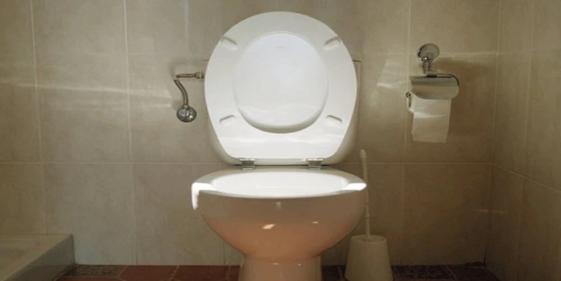Women demand that trans women in public restrooms stop leaving the toilet seat up