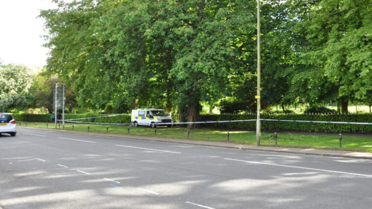 A mother is sent to jail after killing her newborn baby and dumping her body in a park