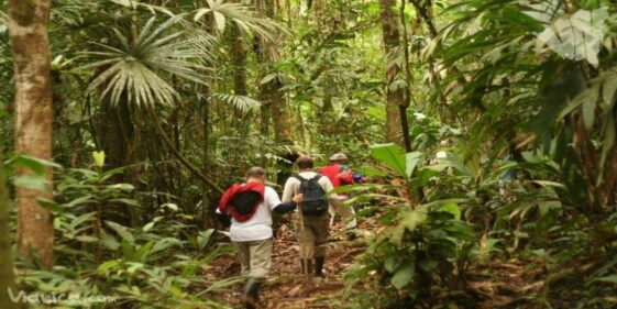 Indio-Maíz Biological Reserve Wildlife Sanctuary