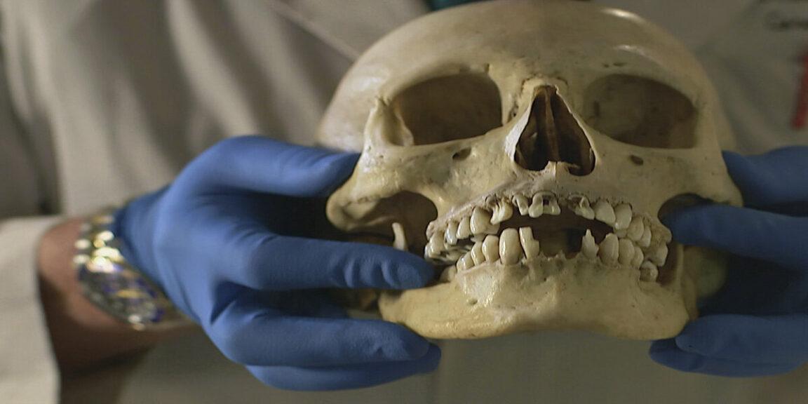 Coroner reveals disturbing details about corpses