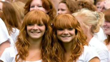 The origin of redheads: everything you need to know
