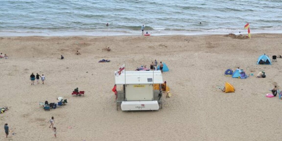 British beach has been evacuated after a shark swam close to shore