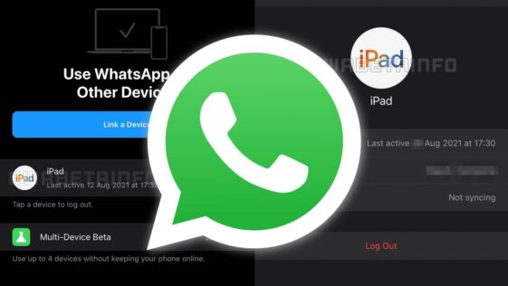 WhatsApp works on an iPad version thanks to multi-device mode