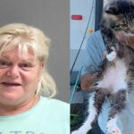 Florida woman arrested for allegedly throwing ex-boyfriend's cat into river after fight