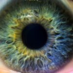 Why do eyes have color? Maybe you've asked yourself this question once.