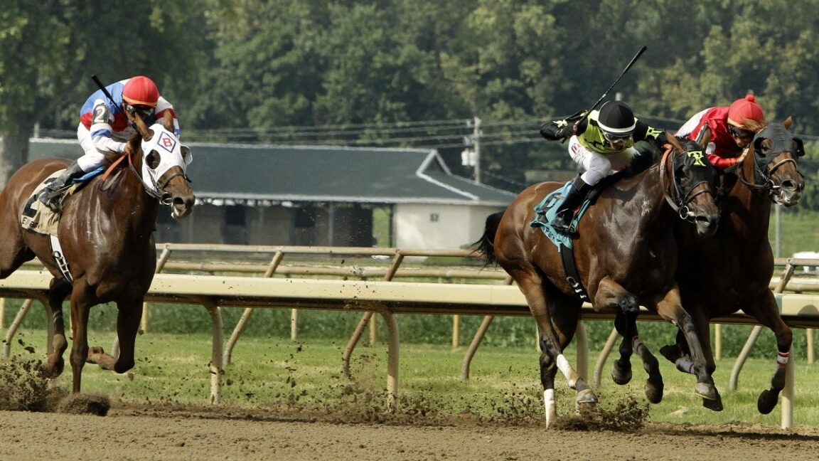 Racehorse runs down Kentucky road after escaping from racetrack
