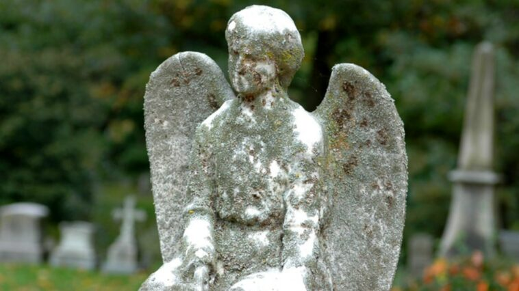 Cemeteries: here are the most evocative cemeteries in the world