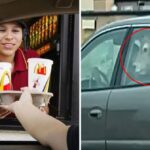 """A """"whole cow"""" is spotted in a car waiting in line at a Wisconsin McDonald's"""
