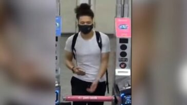 Woman thrown down Brooklyn escalator says her skin split open 'as if I had been clawed by a tiger'