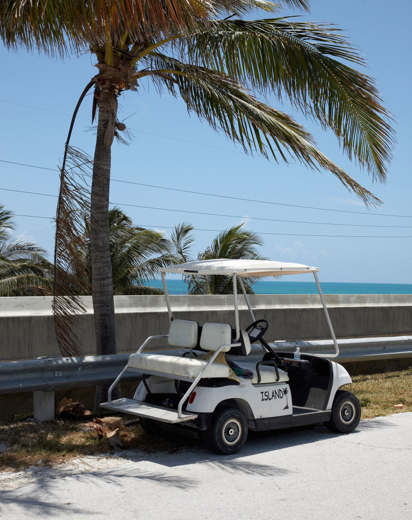 A nude woman driving a golf cart interrupted police during a six-hour standoff