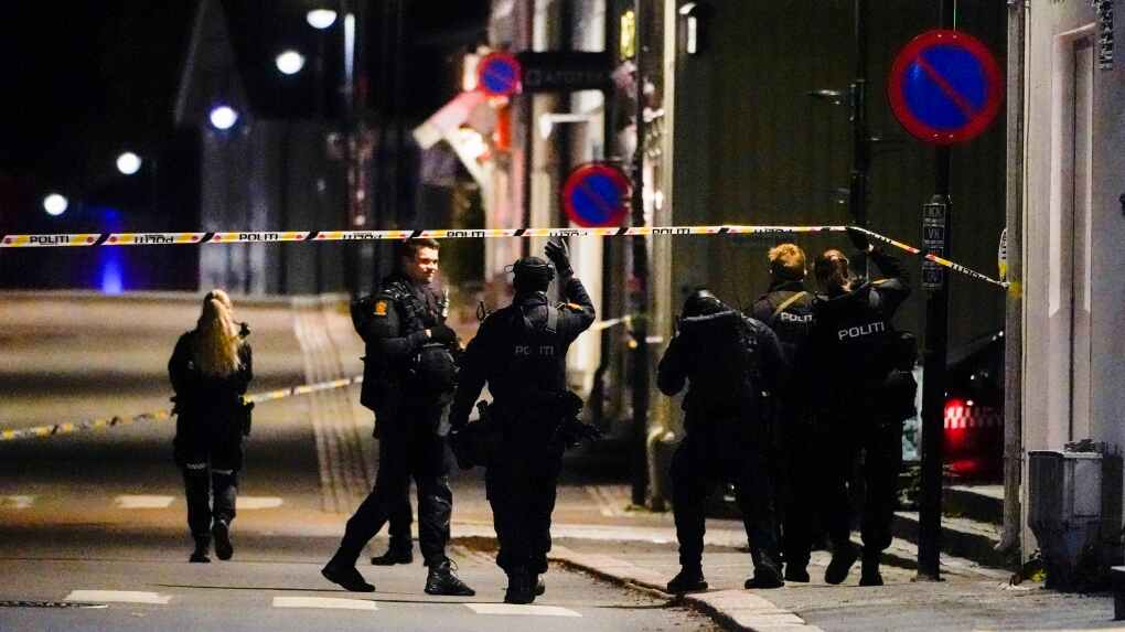At least 5 killed and others wounded in bow and arrow attack near Oslo, Norway
